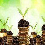 Come investire in agricoltura
